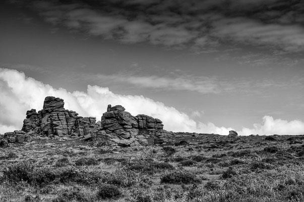 Peter: Dartmoor