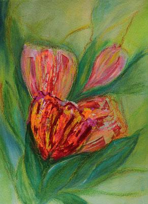 fertiggestellt 2020 - Titel: abstrahierte Tulpen 2 - Format einschließlich Passepartout 30 x 40 cm - Preis 60,00 €