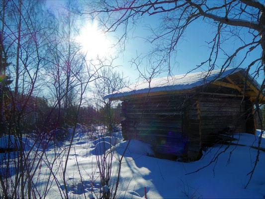 Tiefverschneite Wälder wechseln sich ab mit sonnigen offen ...