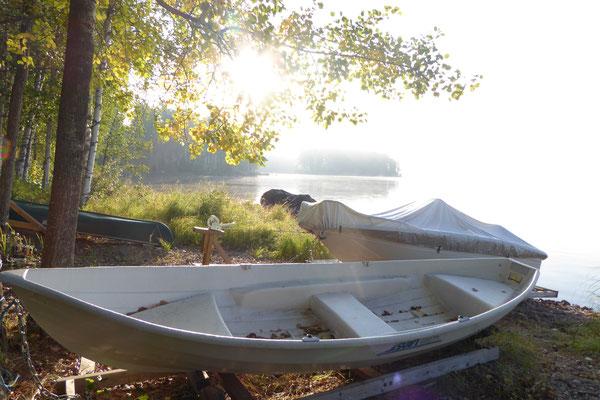 Besonderes weiches Licht und geheimnisvolle Nebel begleiten den Herbst am See.