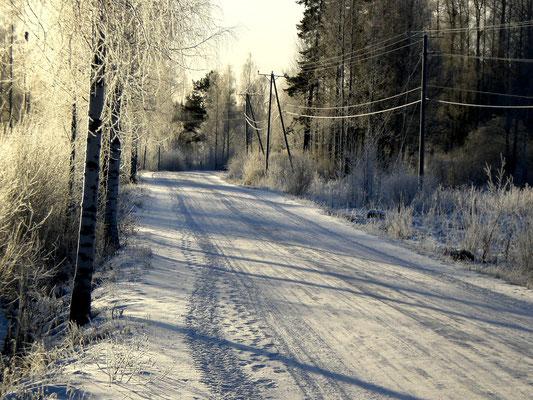 Zu Fuß, mit Schneeschuhen, den Langlaufski oder im warmen Auto. Die Natur lässt sich in den umliegenden Wäldern unterschiedlich erleben. Hier Anfahrt zum Ferienhaus an einem klaren Wintertag.