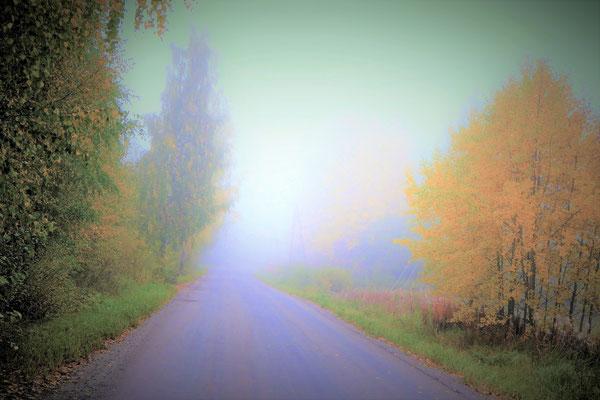 Das Schönste im Leben ist das Geheimnisvolle! Früh morgens umgibt Sie im Herbst eine geheimnisvolle Atmosphäre, bevor später die Sonne den Zauber auflöst.
