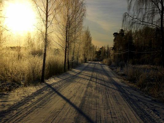 Auch der frühe Wintermorgen birgt viel Ruhe und die Chance auf einen schönen Sonnenaufgang in den Wäldern der Insel Päijätsalo nahe Ihres Domizils.