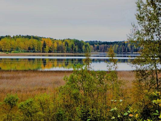 ... Buchten und kleine Seen begleiten uns zunächst in einer offenen Fläche ...