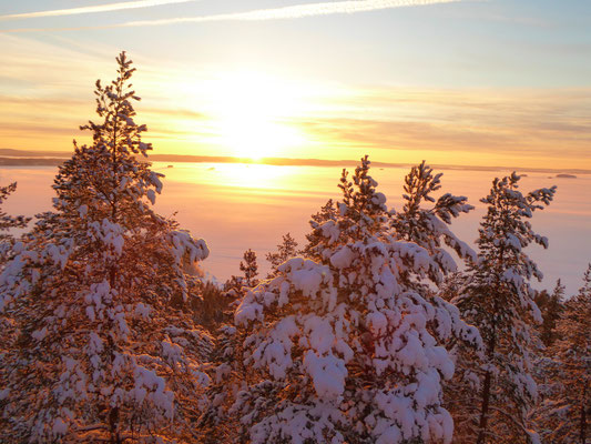 Erleben Sie vom nahen Aussichtsturm hoch über der Winterlandschaft absolute Stille, nur unterbrochen von den Geräuschen des Eisganges.