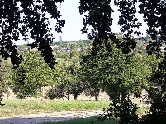Blick von der Schutzhütte nach Dürrenbüchig - Ortsmitte - August 2018