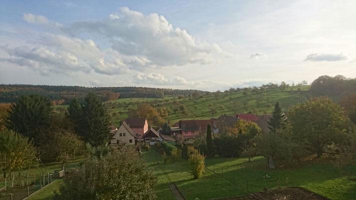 Blick von der Lugenbergstrasse nach Süden ( Nov. 2016 M. Kiefer)