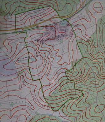 Der gewählte Kartenausschnitt mit hervorgehobenen Höhenlinien.linien und der Gemarkungsgrenze ( Maßstab 1:12261)