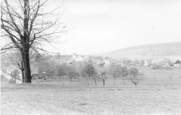 Blick vom Rinklinger Buckel 1958 (Quelle: Helmut Bach)