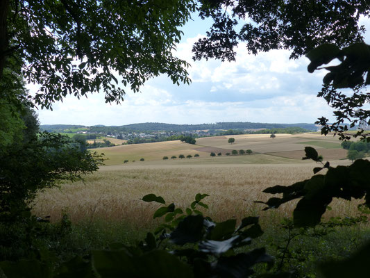 Blick vom Herrenwald nach Wössingen (Juli 2017)