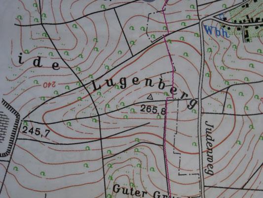Der Lugenberg musste als Testobjekt herhalten. Die topgrafische Karte 1:25000 wurde auf 1:57000 umgeformt.