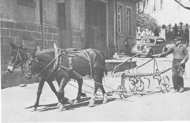 Ludwig Kammerer vor der Alten Schule 1950