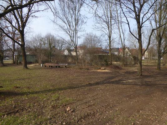 Nach der Teichpflege im Febrar 2017 sieht die Teichanlage wieder aufgeräumt aus und wird bald in neuer Pracht erstrahlen.