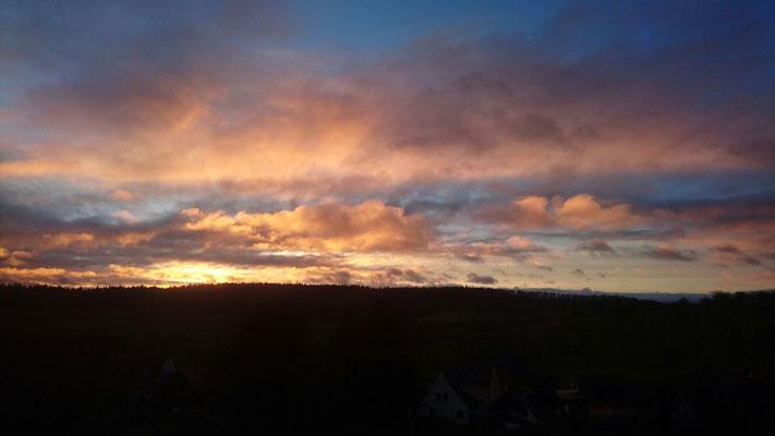 Vormittagshimmel über dem Schlosswald  Bild: Michael Kiefer