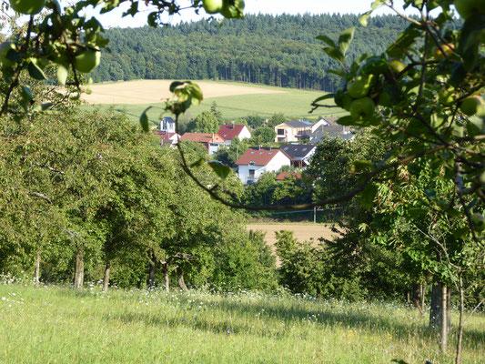 Blick vom Schlohberg August 2016