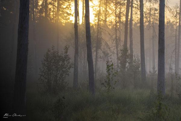 Thomas Deschamps Photography paysage Finlande landscape Finland pictures