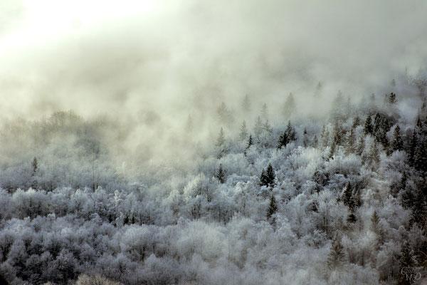 Fenêtre sur cours Brumes hivernals