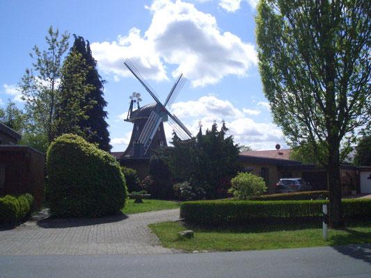 Am nächsten Tag sind wir mit den Rädern nach Jever gefahren und haben diese schöne Windmühle entdeckt