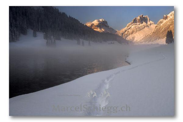 Plattenbödeli/Sämtisersee/Winterimpressionen Art.-Nr. MS5-1228