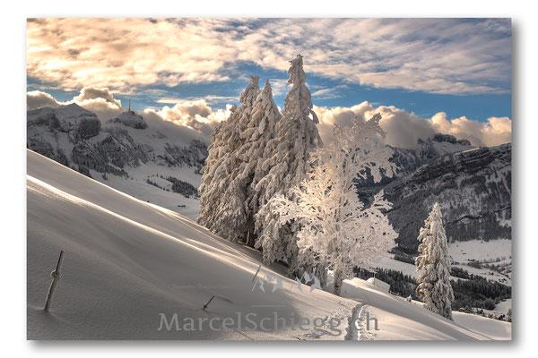 Appenzellerland/Hoher Kasten/Winterimpressionen Art.-Nr. MS5-6742-Januar/19
