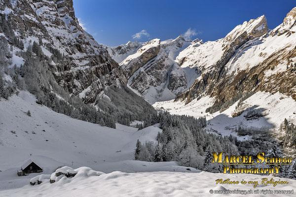 Winterimpressionen/Seealp Wald/Seealpsee Art.-Nr. MS5-9155