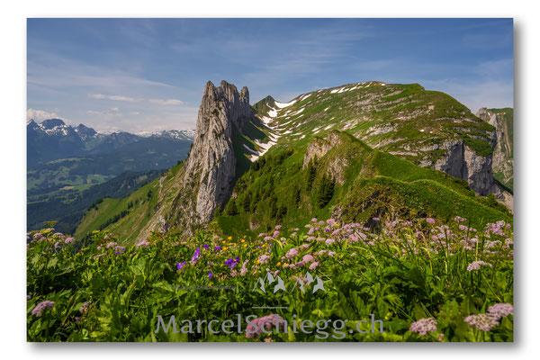 Bollenwees/Geologischer Wanderweg Art.-Nr. MZ7-8503-Juni/21