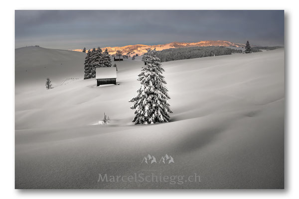 Appenzellerland/Winterimpressionen Art.-Nr. MS5-6762-Januar/19
