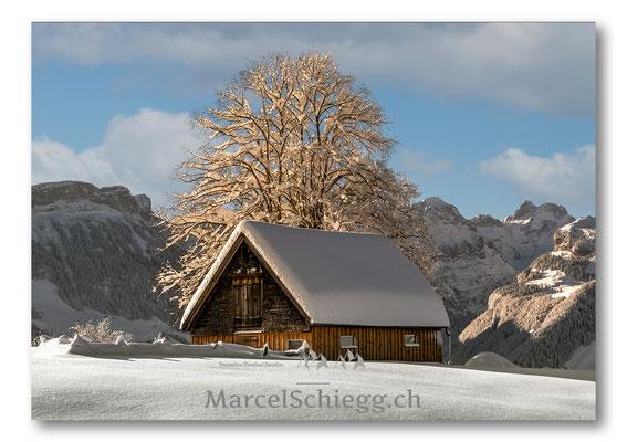 Appenzellerland/Winterimpressionen Art.-Nr. MZ7-5891-Januar/21