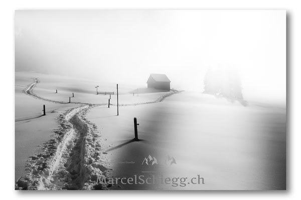 Alpstein/Winterimpressionen Art.-Nr. MS8-5367-Januar