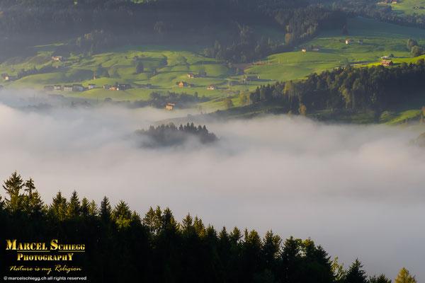 Appenzellerland Art.-Nr. MS5-5620-September/2018