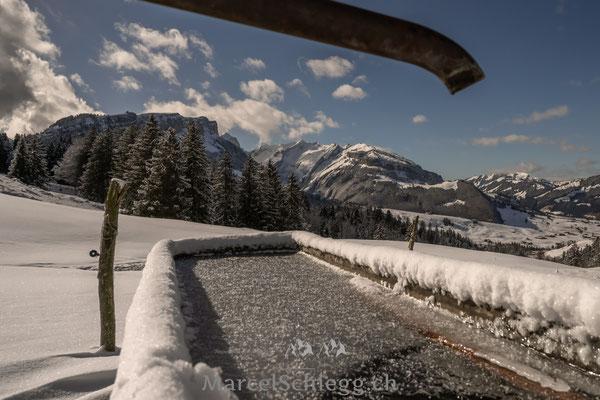 Alpstein/Winterimpressionen Art.-Nr. MZ7-6064-Februar/2021
