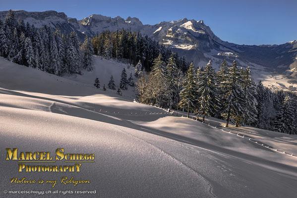 Winterimpressionen Art.-Nr. MS8-5222