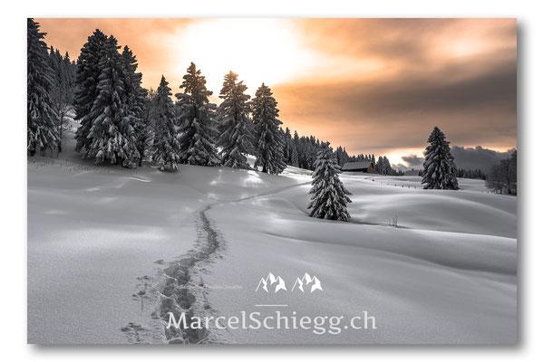 Appenzellerland/Winterimpressionen Art.-Nr. MS5-6765-Januar/19