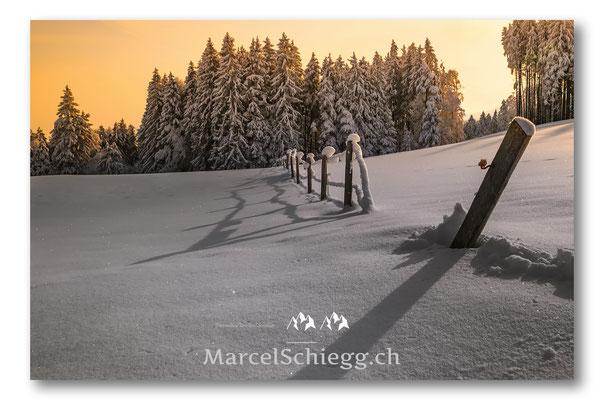 Appenzellerland/Winterimpressionen Art.-Nr. DSC-0069-Februar
