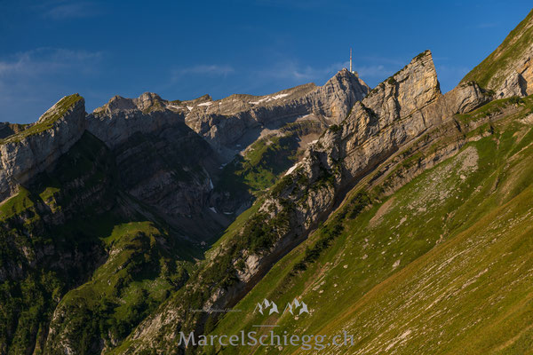 Säntis-View Art.-Nr. MZ7-1484-August/2019