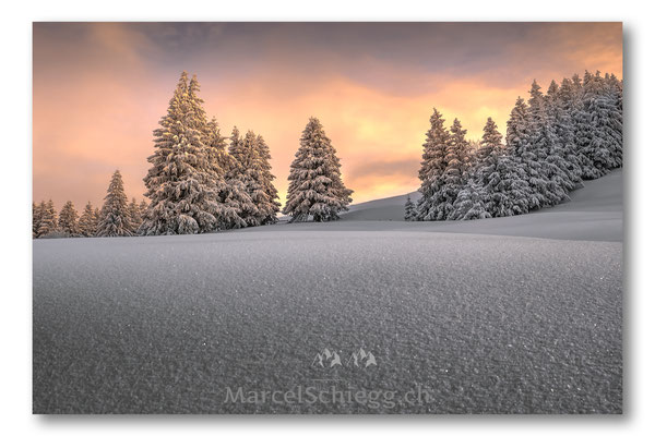 Appenzellerland/Winterimpressionen Art.-Nr. MS5-6770-Januar/19