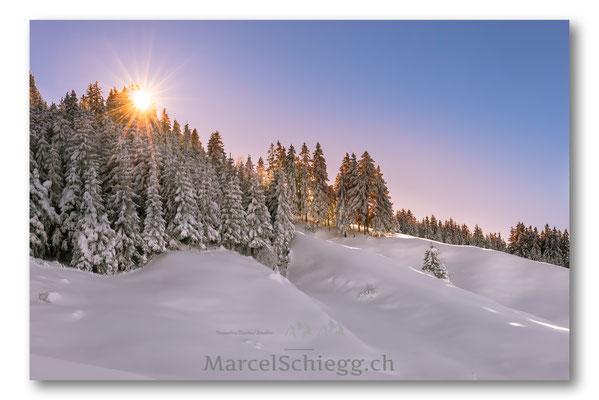 Alpstein/Winterimpressionen Art.-Nr. MS8-5214-Januar