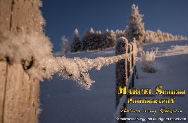 Winterimpressionen Art.-Nr. MS5-8271-2017