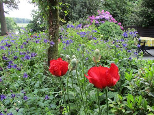 Der üppige Garten