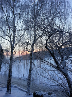 Hof Wintermorgen 2014