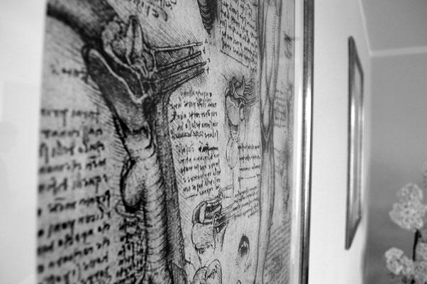 Bilder über anatomische Studien, www.osteopathie-lehrmann.de