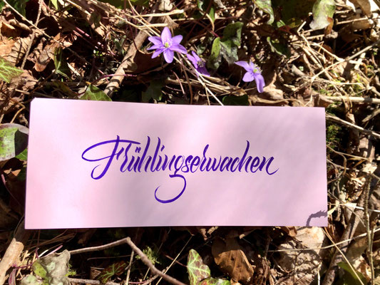 Simply-NeW-Art-Nelly-Wüthrich-Kehrli-Brienz-Lettering-Brushlettering-Workshop-Kurse-Frühlingserwachen
