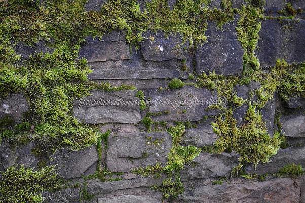 Dies ist die Mauer auf der Brücke in Dümpelfeld