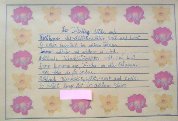 Wir Sind Die Klasse 4c Grundschule Auf Der Lieth Paderborn