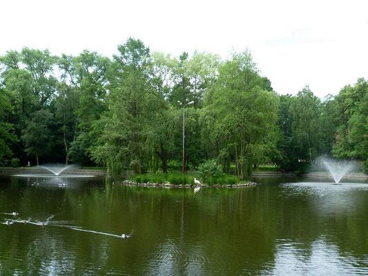 Fontäne am Dom Kultury in Zgorzelec (früherer Georg-Snay-Park in der Oststadt)