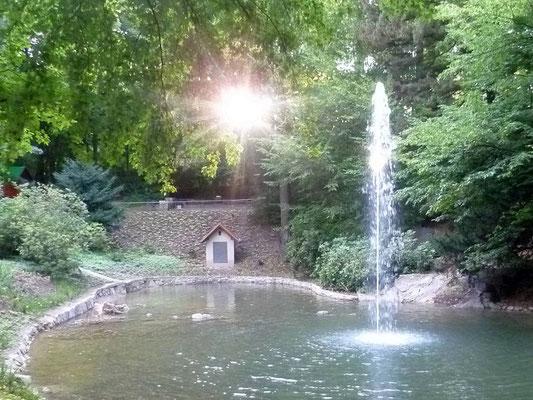 Fontäne im Stadtpark