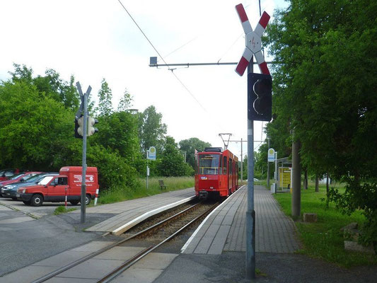 Linie 1 Erich-Weinert-Straße