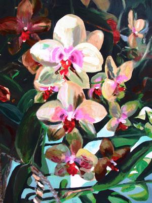 Orchidee in serre; 60x80 cm (linnen)