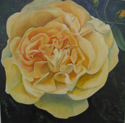 Gele Roos: 50x50 cm (linnen, in particulier bezit)