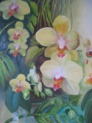 Orchidee in serre; 65x80 cm (linnen)